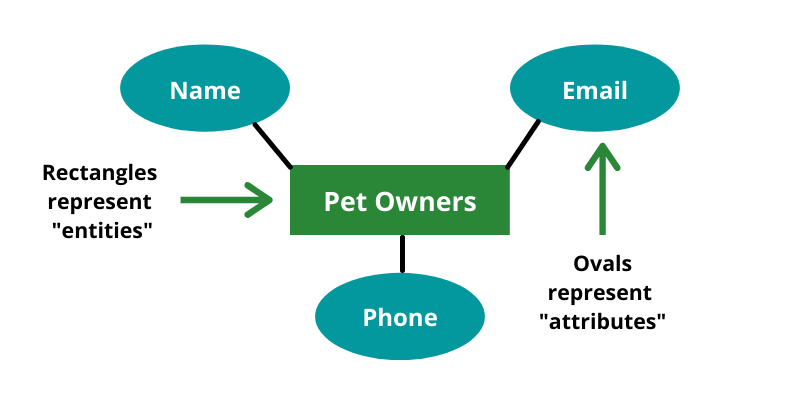 Diagram showing pet owners in the middle with name, email, and phone connecting to it.