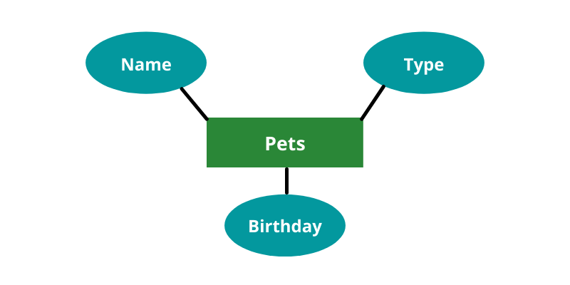 Diagram showing pets in the middle with name, type, and birthday connecting to it.