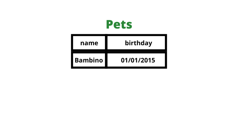 Name and birthday for only cat pets.